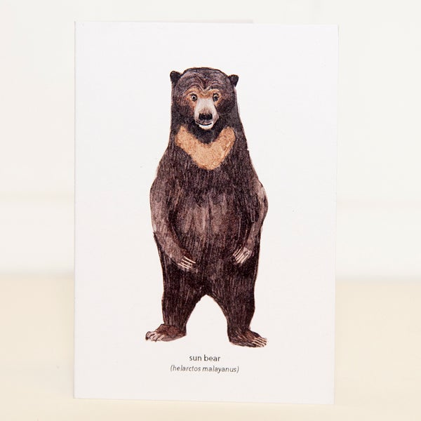 Image of Sun Bear Mini Card