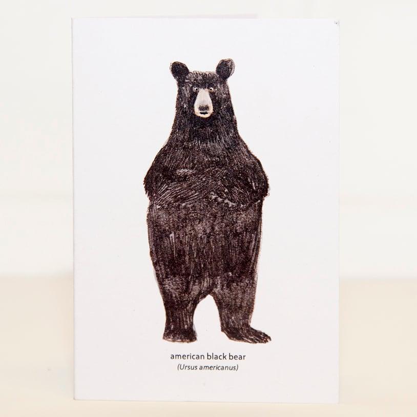 Image of North American Black Bear Mini Card