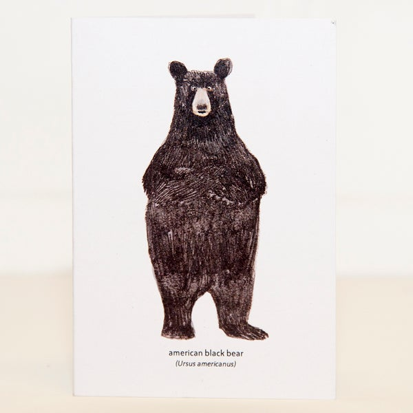 Image of North American Black Bear Mini Card