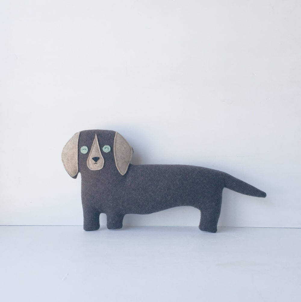 Image of the Doxie