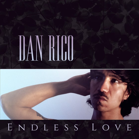 "Image of MP-95 DAN RICO ""ENDLESS LOVE"" LP"