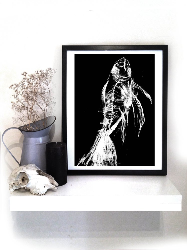 Image of Fish Xray A3 print