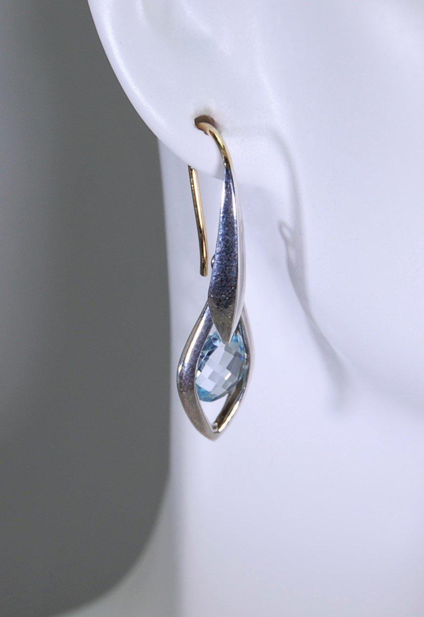 Image of Tratti Blu Earrings
