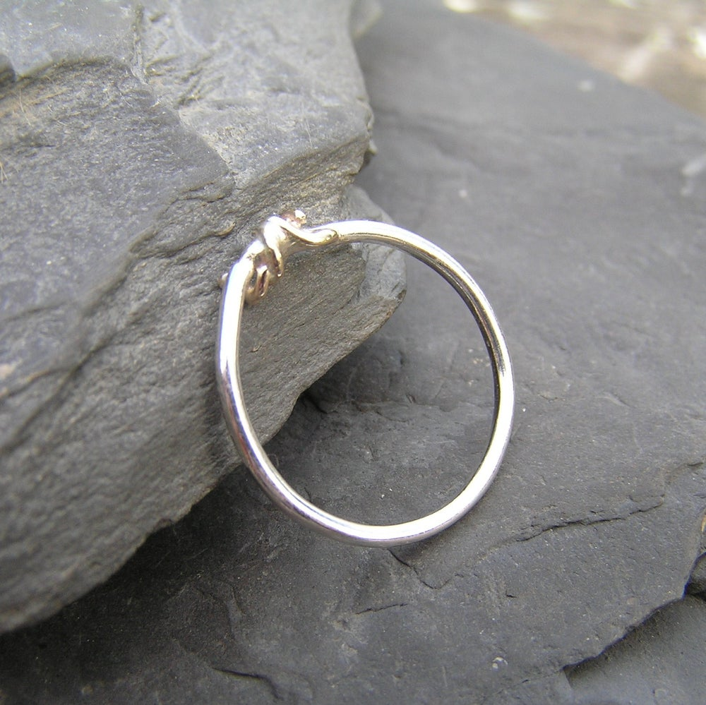Image of Silver ring with gold detail