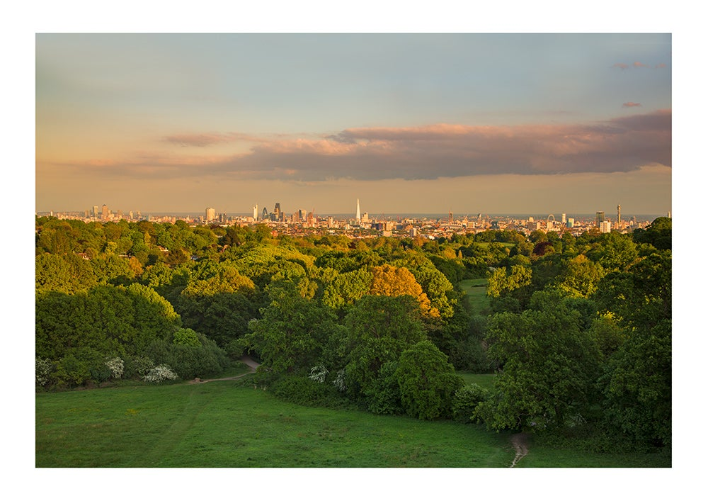 Image of View of London from Hampstead Heath