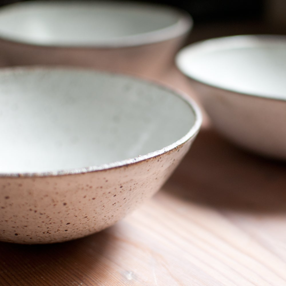 Image of Raw Rimmed Dinner Bowl
