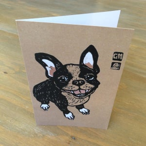 Image of French Bulldog