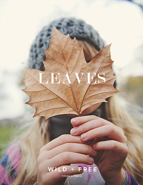 Image of LEAVES Content Bundle