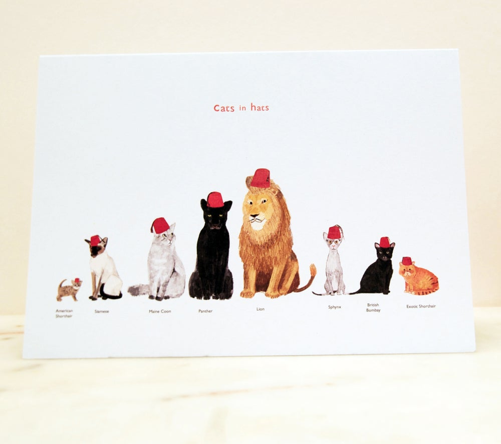 Image of Cats in Hats card