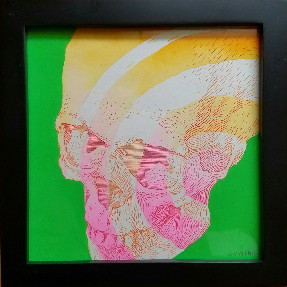 Image of Untitled (skull #01)