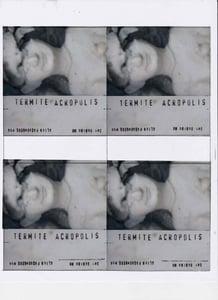 Image of 58 Termite Acropolis