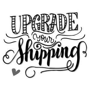 Image of Add this Item to Upgrade to Expedited Shipping (Harley Quinn T-Shirt Only)