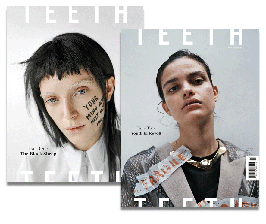 Image of 2015 Teeth Magazine Subscription Package (2 Issues)