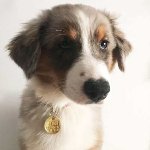Image of CUSTOM<br>HAND HAMMERED<br>PET ID TAG