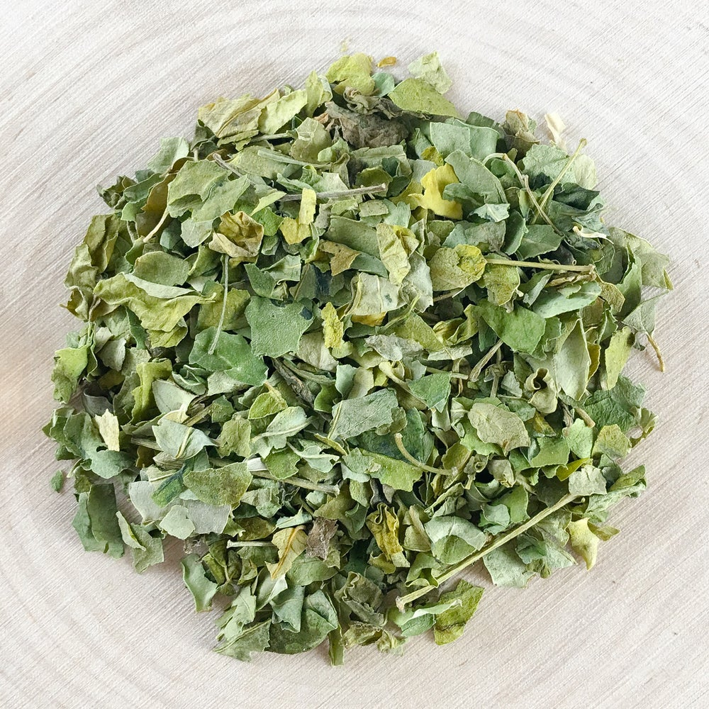 Image of Moringa