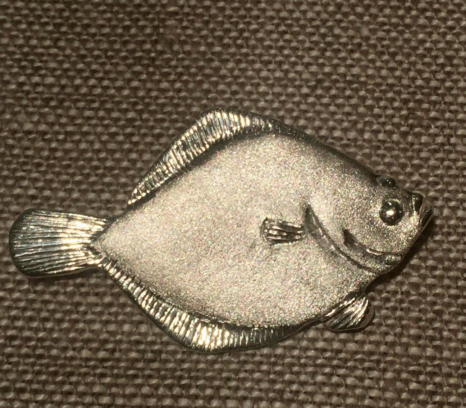 Image of Hudson River Fish Pins