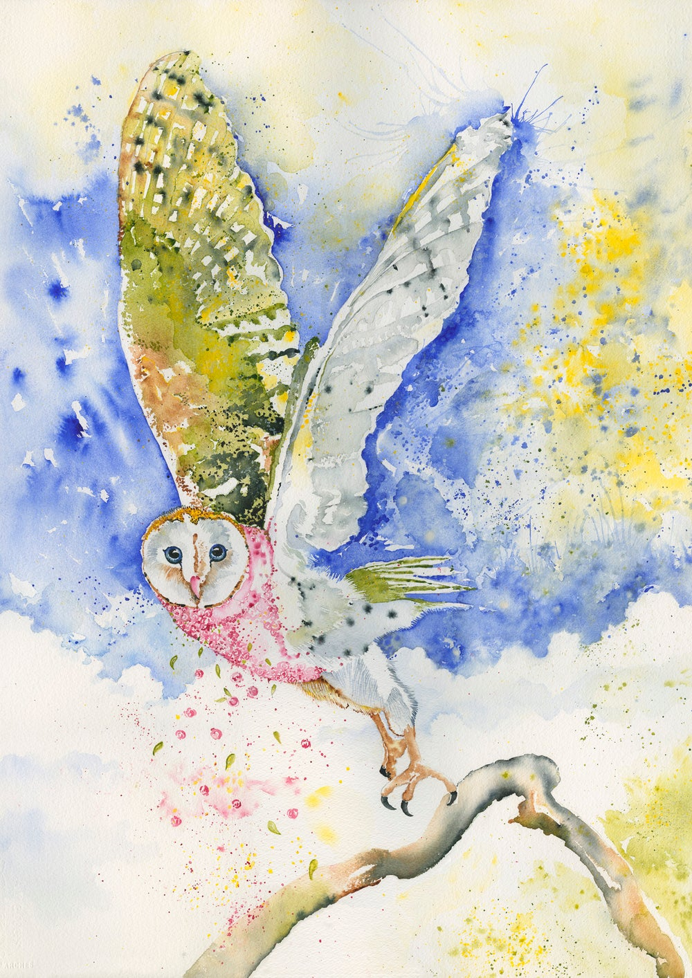 Image of Cannella, the beautiful wise Owl