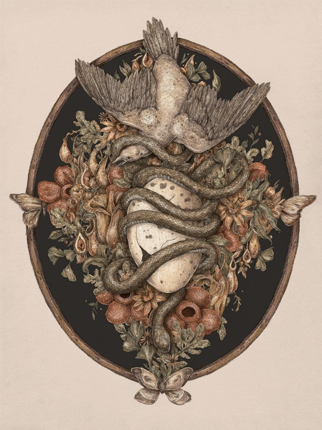 Image of Botanica Print