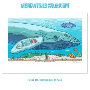 Image of 3. Merewether Aquarium A4 digital prints Nine to Eleven