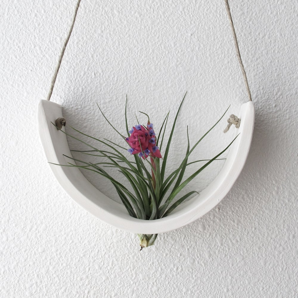 Image of Hanging Ceramic Air Plant Cradle White Earthenware