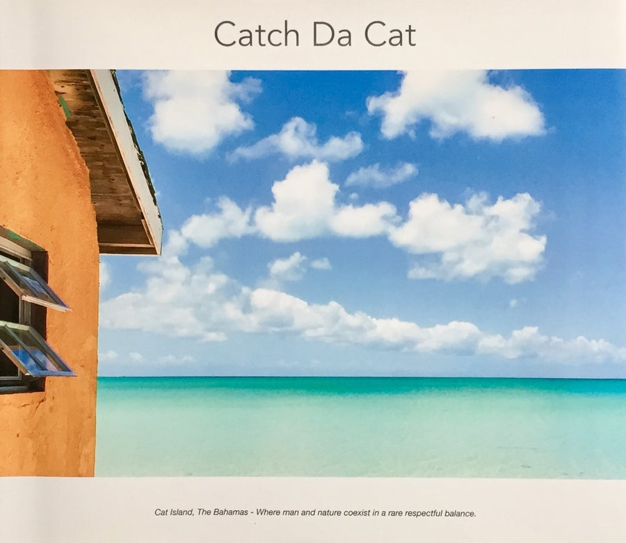 "Image of Catch da cat - Limited Edition - 13""x11"" Hard Cover - 140 pages"