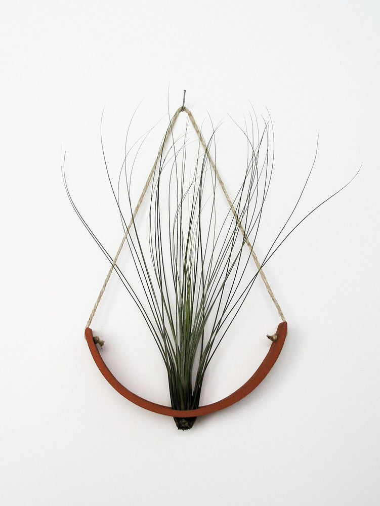 Image of Hanging Ceramic Air Plant Cradle Terracotta