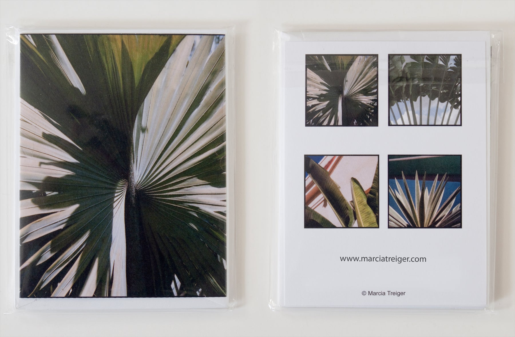 Set of 4 Cards - Palms