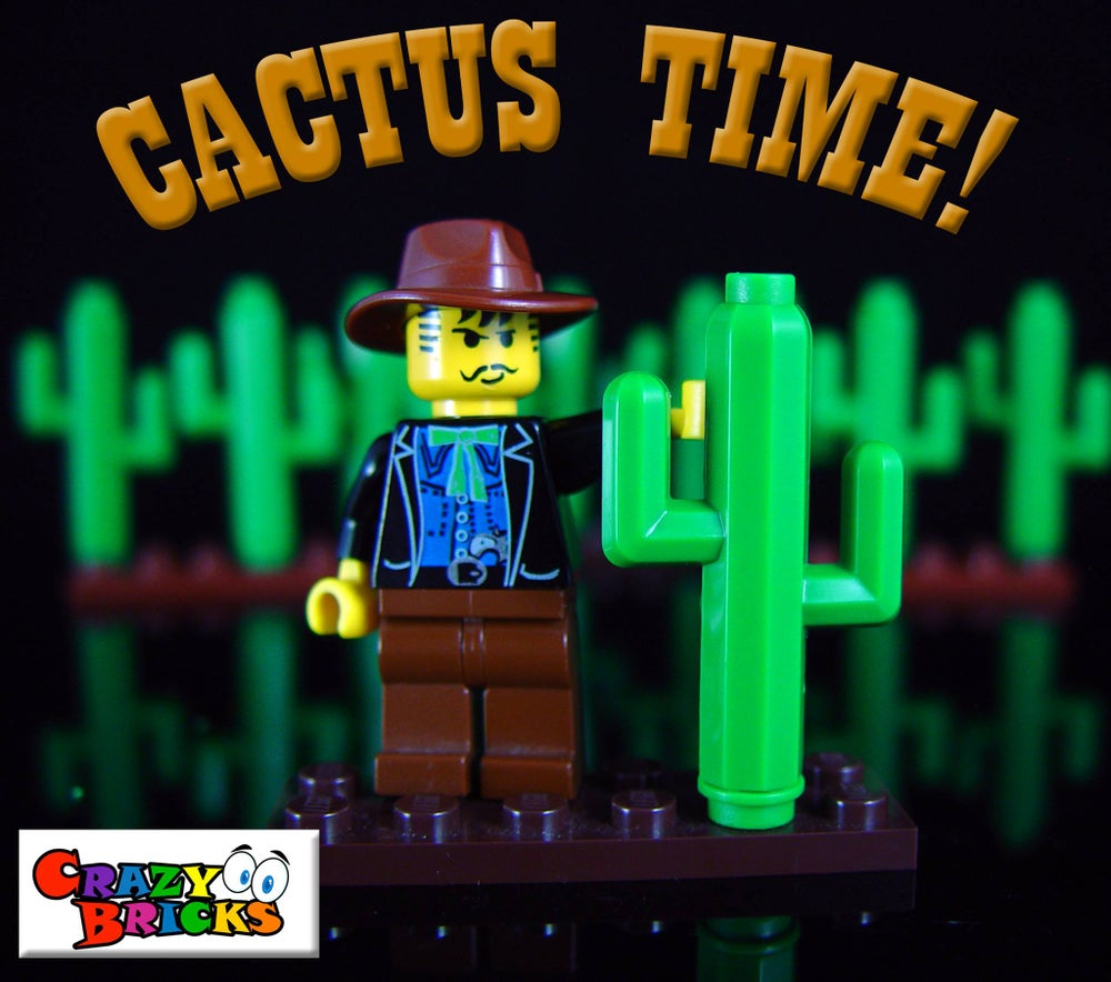 Image of Exclusive Cactus