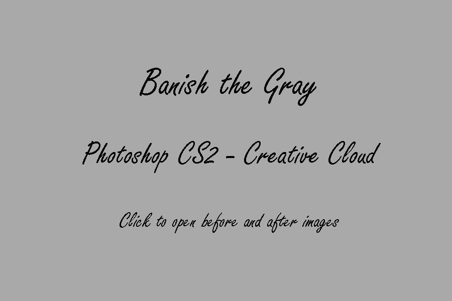Son Kissed Photography — PS CS2-CC : Banish the Gray © Son