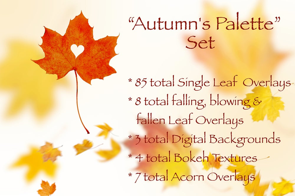 Image of Autumn's Palette Set