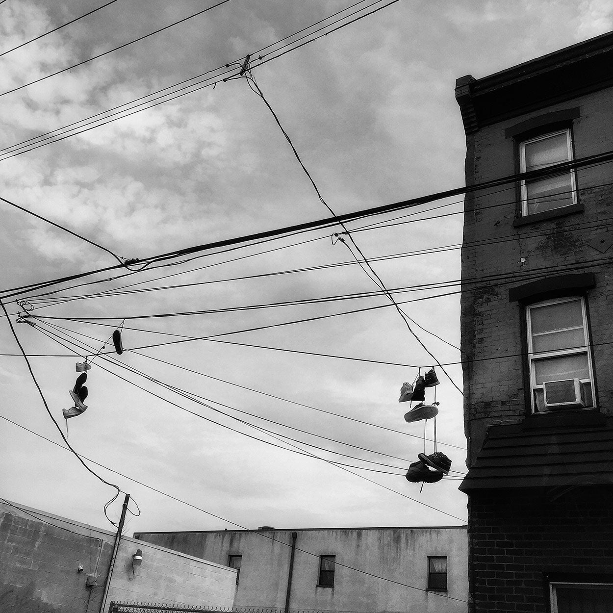 Image of Power Lines by Jessica Kourkounis