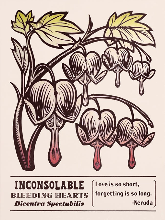 Image of Inconsolable Bleeding Hearts