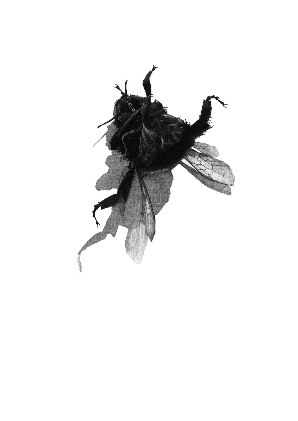 Image of Small Dead Things 1 (Bee)