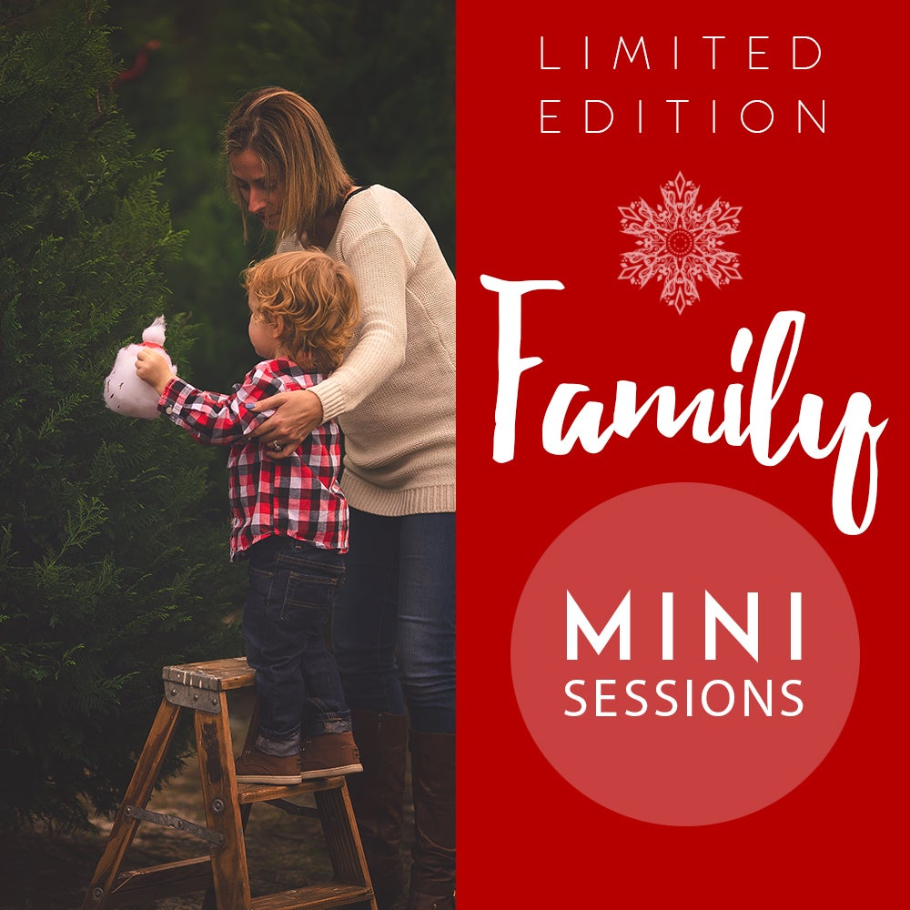 Image of Limited Edition Family Mini Sessions (on-location)