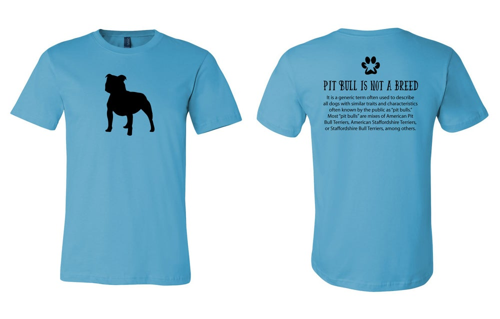 Image of Pit Bull - Turquoise