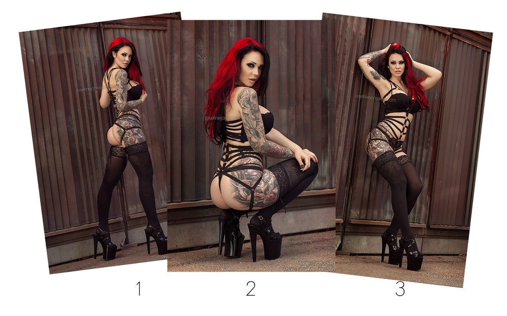 Image of  A4 or A3 size, signed high quality print Starfucked harness