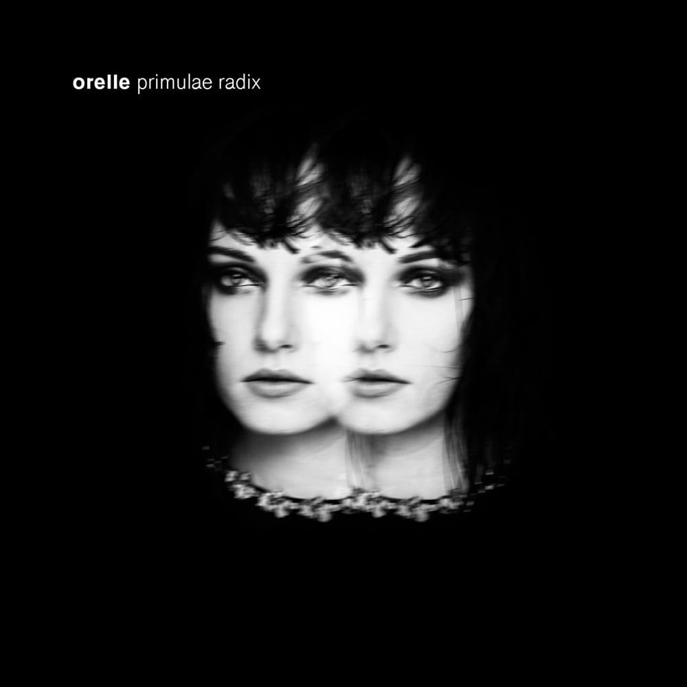 """Image of Orelle - """"Primulae Radix"""" (2015)"""
