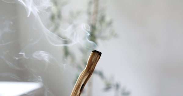 Image of Palo Santo Wood Sticks