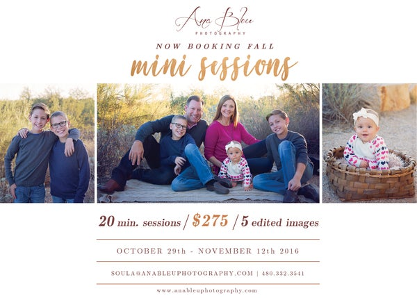 Image of FALL/HOLIDAY MINI SESSIONS (Up to 5 People)