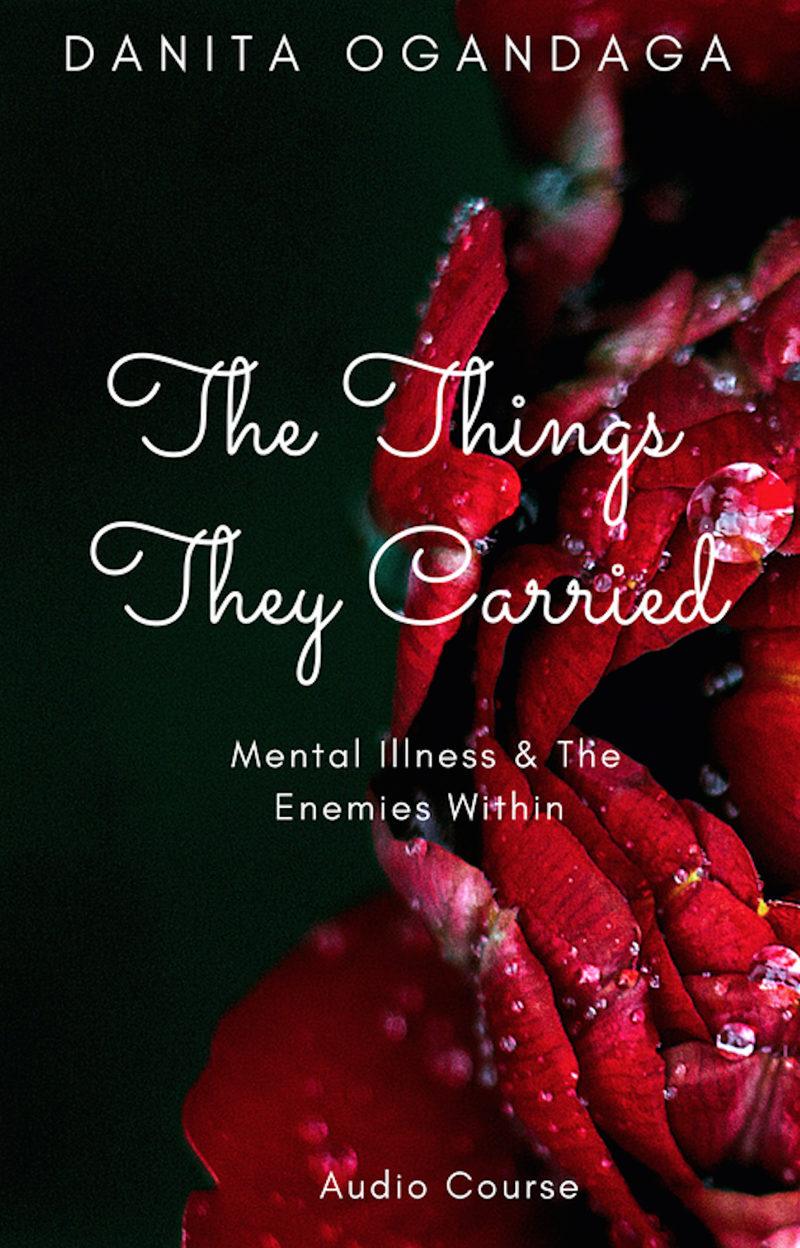 Image of The Things They Carried: Mental Illness and the Enemies Within