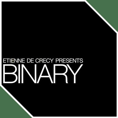"Image of Vinyl 10""   Binary"