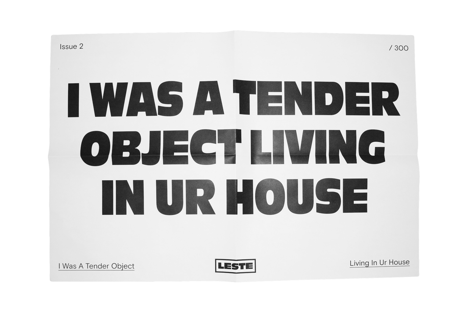 Image of PRE SALE - TENDER OBJECT POSTER - 17x23
