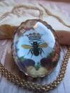 Honeybee Queen