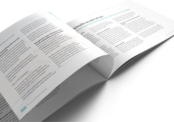 Image of Clean Up and Business Review Brochure Print
