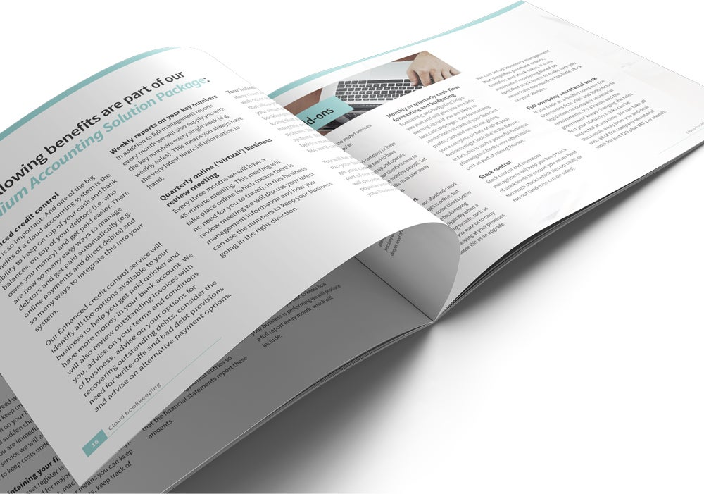 Image of Virtual Financial Management Brochure Print