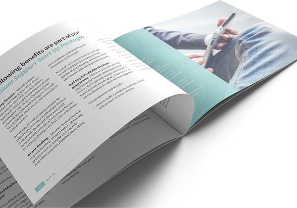 Image of Start Up Brochure Print