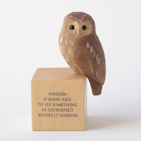 Image of Owl with hindsight