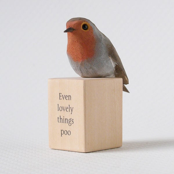 Image of Even lovely things poo