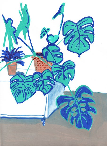 Image of Teal monstera and white cupboard