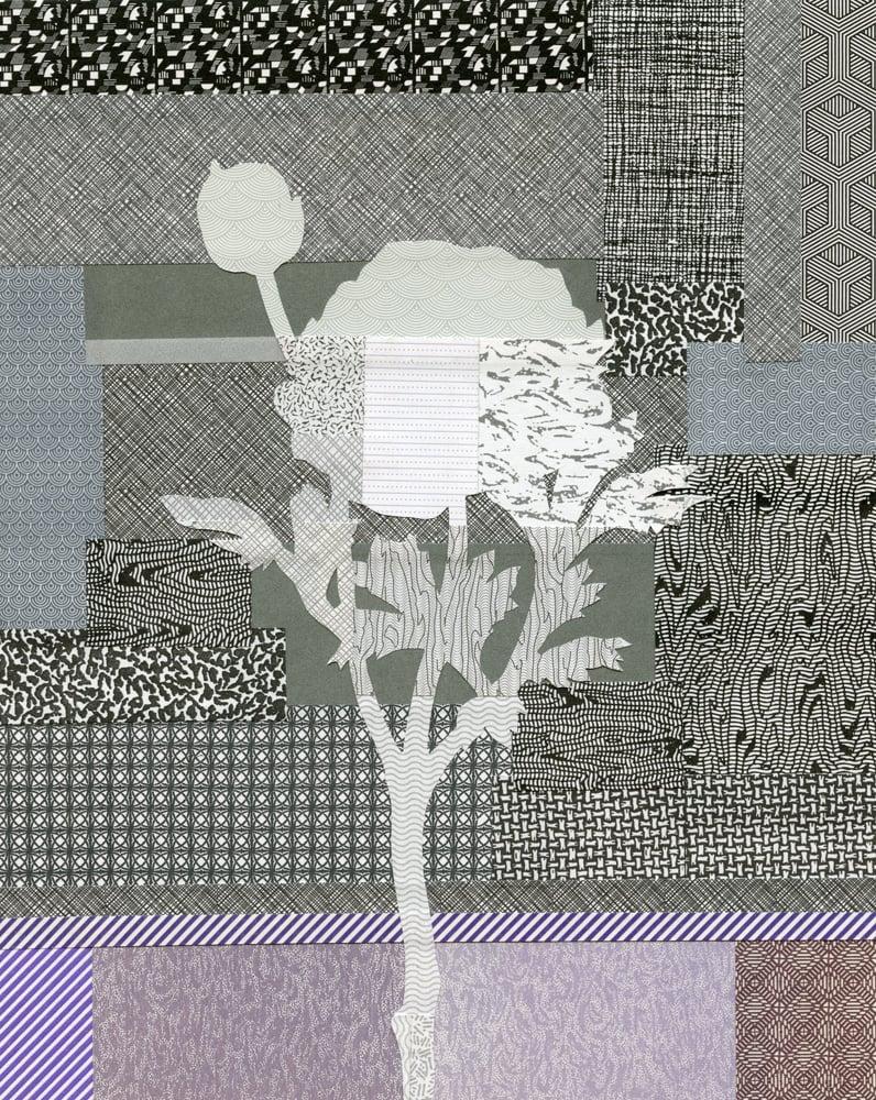 Image of Silk Lobby Ranunculus #03